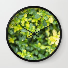 Nature floral herbal pattern Wall Clock