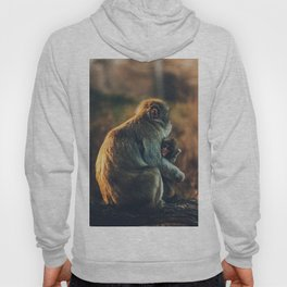 Macaque Motherly Love Hoody