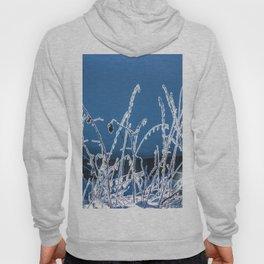 Frozen grass Hoody