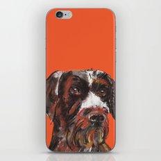 Hunting dog, printed from an original painting by Jiri Bures iPhone & iPod Skin