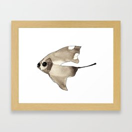 Sail Fish Framed Art Print