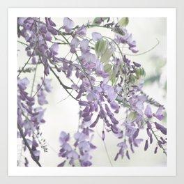 Wisteria Lavender Art Print