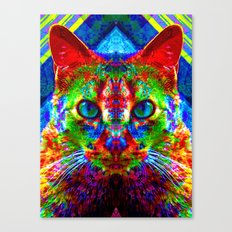Sir Parker the Chromatic Cat Canvas Print