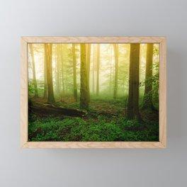 Misty Green Forest Photography Framed Mini Art Print