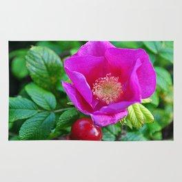 rosehip Rug