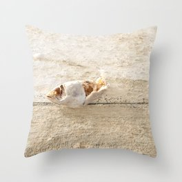 Lost Fish Throw Pillow