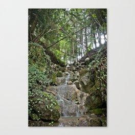 Nature 21 Canvas Print