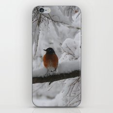 Surpised by the snow iPhone & iPod Skin