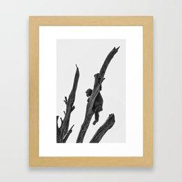 CHIMP PLANNING ESCAPE Framed Art Print