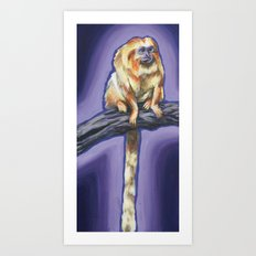 Golden Lion Tamarin Art Print