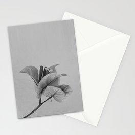 Forgotten No. 1 Stationery Cards
