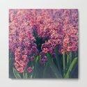 Hyacinth field #2 by julianarw