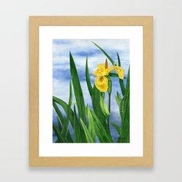 Yellow Iris by Teresa Thompson Framed Art Print
