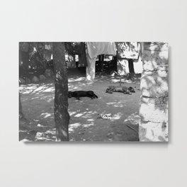 sleeping dogs lie Metal Print