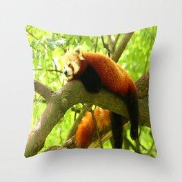 Chilling Red Panda Throw Pillow