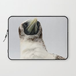 Masked Booby Laptop Sleeve