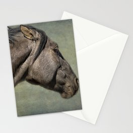 Garcia No. 1- Pryor Mustangs Stationery Cards
