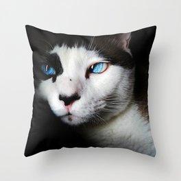 Cat siamese blue eyes Throw Pillow