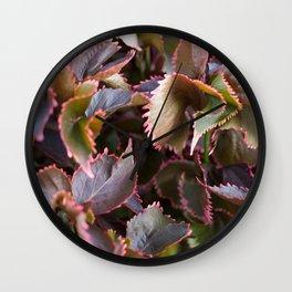 Color Tropical Wall Clock