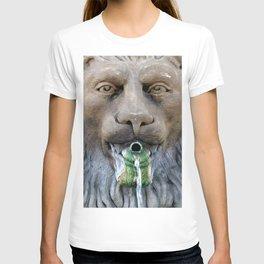 Lion Fountain T-shirt