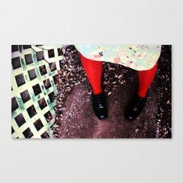 red socks Canvas Print