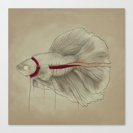 SUSHI SEASON Canvas Print