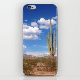Desert Love iPhone Skin