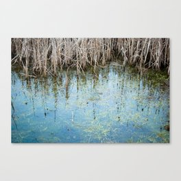 nature 2 - pond Canvas Print