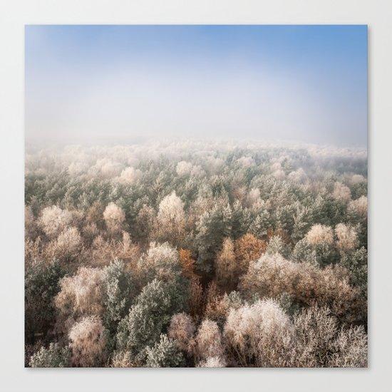 Vanish in the Snow Canvas Print
