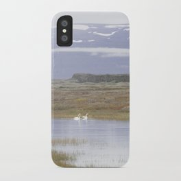 Swans of Iceland iPhone Case