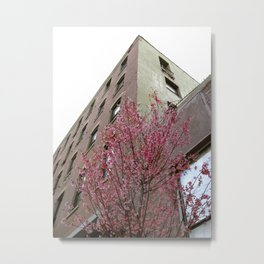 A Tree Grows In Brooklyn Metal Print
