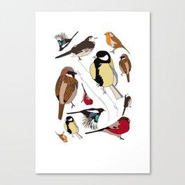 Some Birds Canvas Print