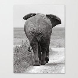 B&W Elephant Canvas Print
