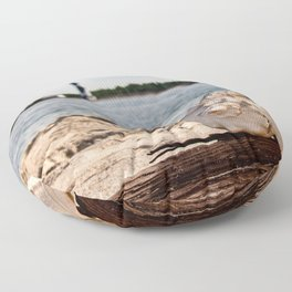Whelk on Driftwood Floor Pillow