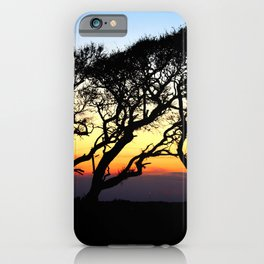 Sunset Through The Oaks iPhone Case