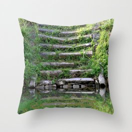 River stairs Throw Pillow