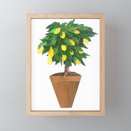 Lemon Bonsai Tree Framed Mini Art Print