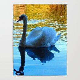 my three swans Poster