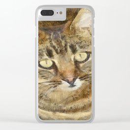 Cute Tabby Looking Up Clear iPhone Case