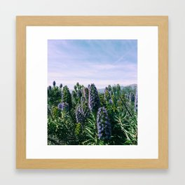 Purples Framed Art Print