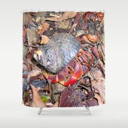 Watercolor Invertebrate Hermit Crab 01, Soldier Boy! Shower Curtain