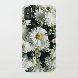 Daisy Dandy iPhone Case