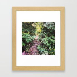 The Road Less Traveled Framed Art Print