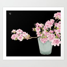 Heavenly Blossom on Black Art Print