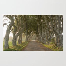 The Dark Hedges Rug