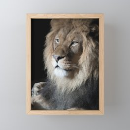 Portrait of a King Framed Mini Art Print