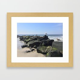 Seagulls on the Jetty's Framed Art Print