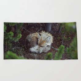 Sleeping Fox Beach Towel