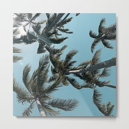 Perfect Sky Palms Metal Print