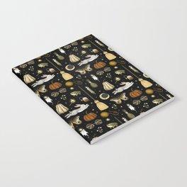 october nights Notebook